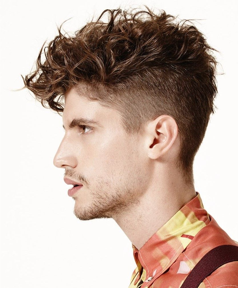 Featured Photo of Undercut Hairstyles For Curly Hair
