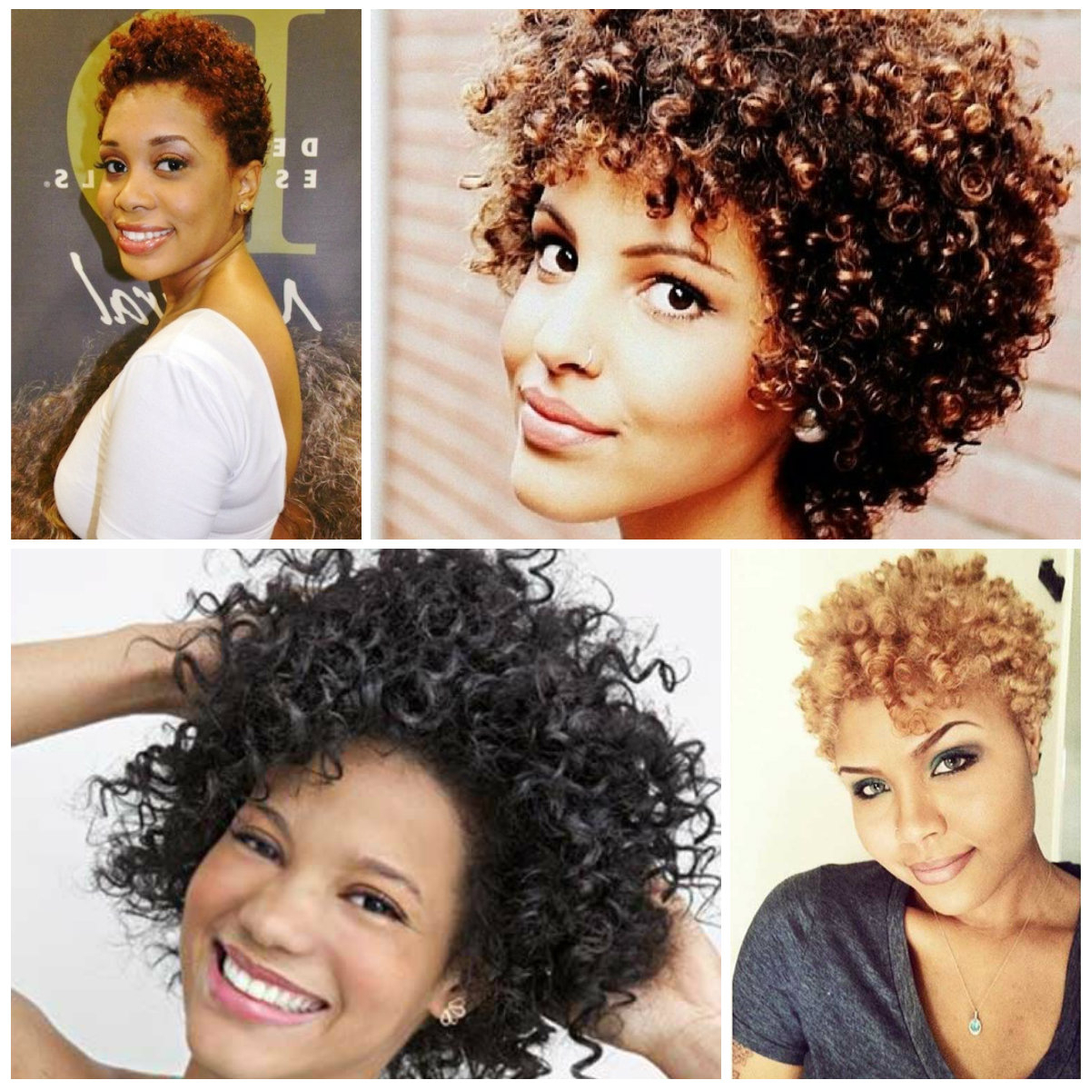 2016 Trendy Short Natural Afro Curls | 2019 Haircuts, Hairstyles And Intended For Trendy Short Curly Haircuts (View 13 of 25)