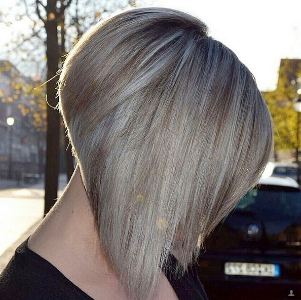 22 Cute Inverted Bob Hairstyles – Popular Haircuts In Side Parted Asymmetrical Gray Bob Hairstyles (View 4 of 25)