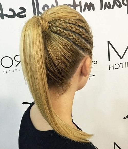 30 Fantastic French Braid Ponytails In Reverse Braid And Side Ponytail Hairstyles (View 12 of 25)