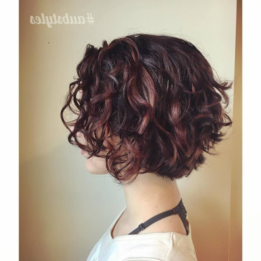 33 Hottest Short Curly Hairstyles Trending In 2018 Intended For Golden Brown Thick Curly Bob Hairstyles (View 24 of 25)