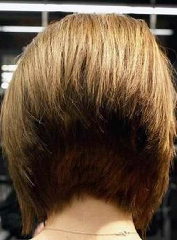 45 Best Dorothy Hamill Hairstyles For The Chic Mature Woman Intended For Short Bob Hairstyles With Tapered Back (View 10 of 25)