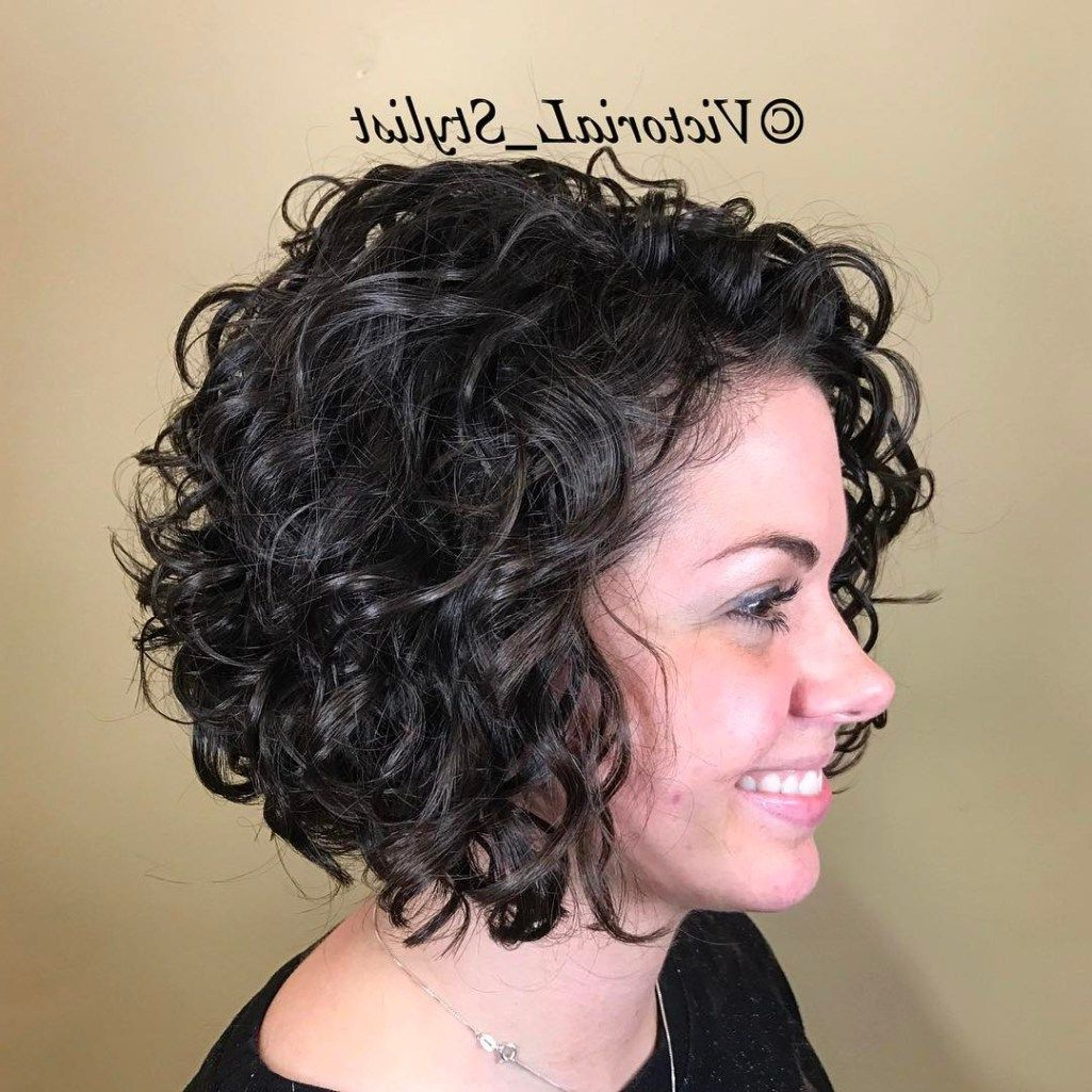 50 Different Versions Of Curly Bob Hairstyle | Curly Bob Hairstyles Inside Bouncy Curly Black Bob Hairstyles (View 10 of 25)