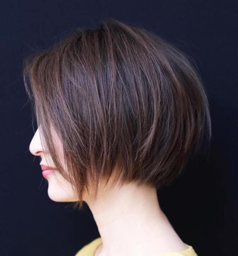 Featured Photo of Modern Chocolate Bob Haircuts