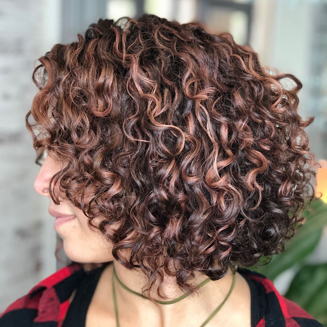 55 Different Versions Of Curly Bob Hairstyle In 2018 | Curly Girl With Short Bob Hairstyles With Whipped Curls And Babylights (View 2 of 25)