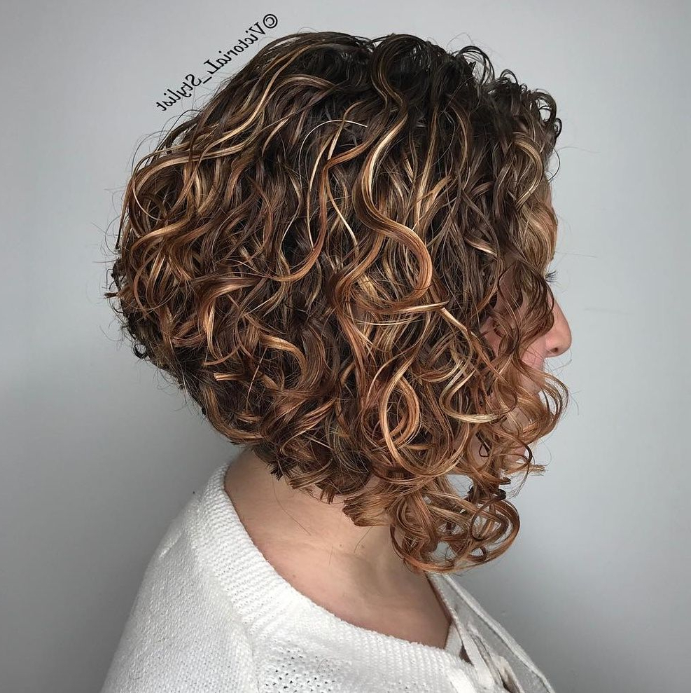 55 Different Versions Of Curly Bob Hairstyle In 2018 | ???????? With Regard To Curly Angled Bob Hairstyles (View 5 of 25)