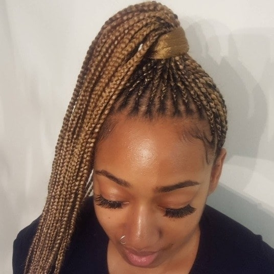 6 Instagram Approved Ways To Style Your Small Box Braids This Season In Beach Friendly Braided Ponytails (Gallery 22 of 25)