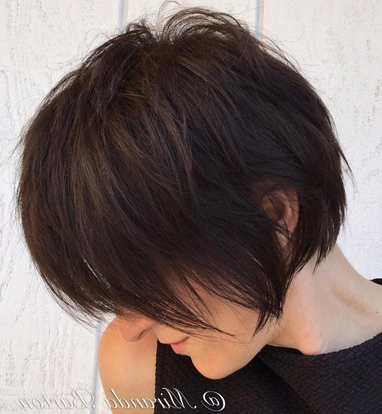 Featured Photo of Long Feathered Espresso Brown Pixie Hairstyles