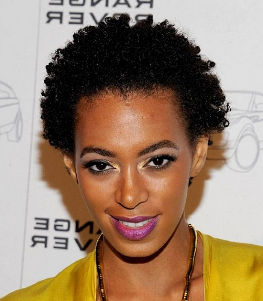 8 Cute Black Hairstyles For The Modern Black Woman | Hairstyle Album With Regard To Afro Short Haircuts (View 24 of 25)
