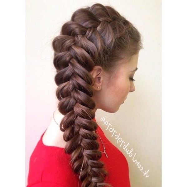95 Inspirational Dutch Style Braid Ideas That You Will Love In Pony And Dutch Braid Combo Hairstyles (View 25 of 25)