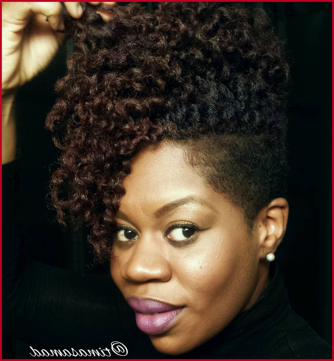 African American Natural Short Hairstyles 202612 40 Cute Tapered Within Afro Short Haircuts (View 16 of 25)