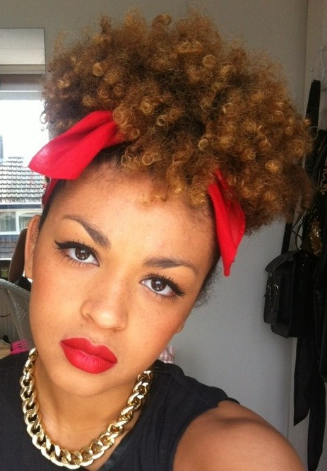 African American Short Curly Hairstyles   The Best Hairstyles Within Short Haircuts For Natural African American Hair (Gallery 19 of 25)