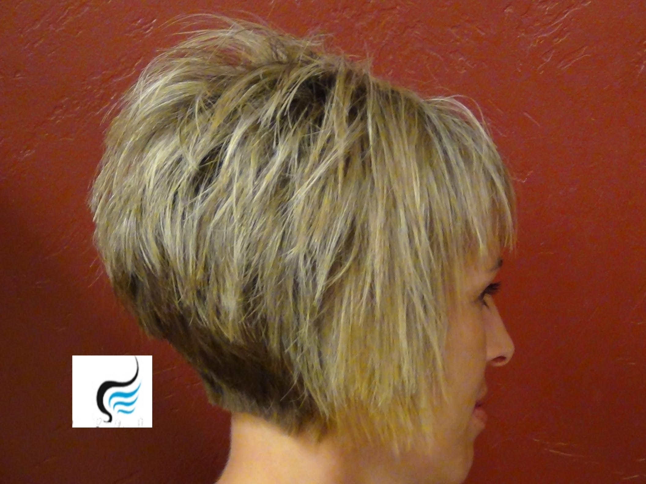 Back Of Inverted Bob Hairstyles – Hairstyles 2018 Within Inverted Short Haircuts (View 7 of 25)