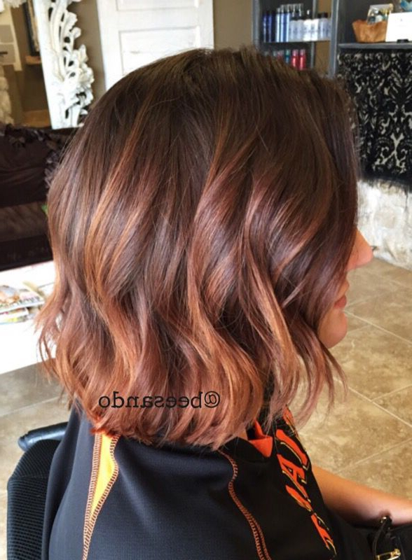 Balayage Copper Inverted Bob – Google Search | Highlights In 2018 With Inverted Brunette Bob Hairstyles With Feathered Highlights (View 6 of 25)
