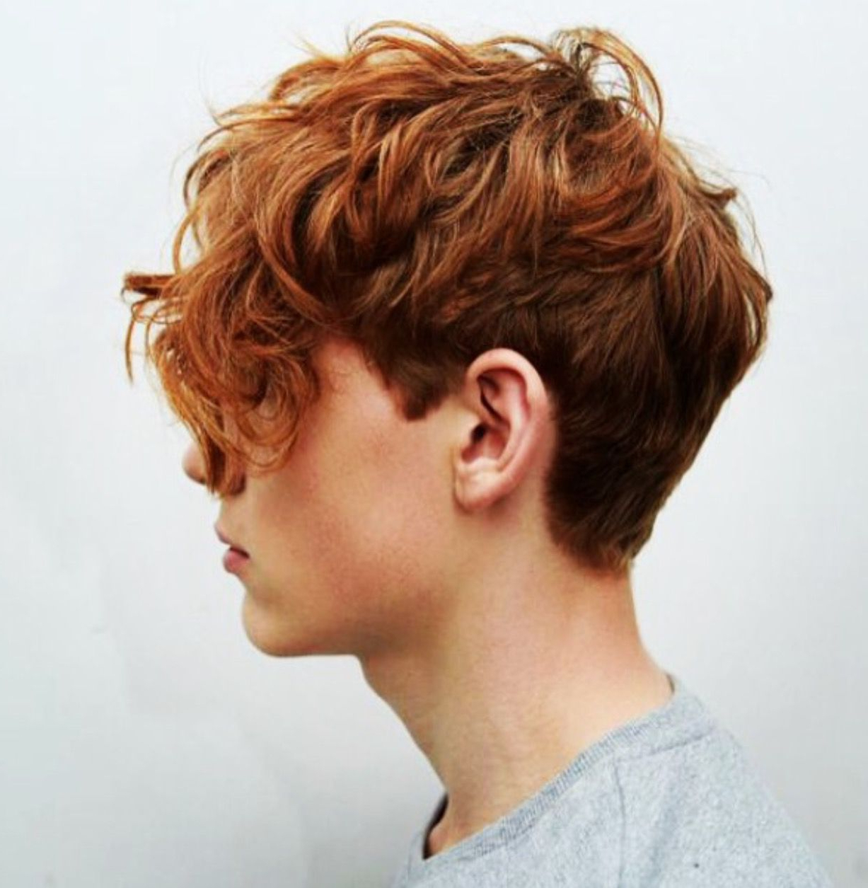 Beau Hair (Ginger) | Beau Churchill In 2018 | Pinterest | Hair Inside Tapered Brown Pixie Hairstyles With Ginger Curls (View 6 of 25)