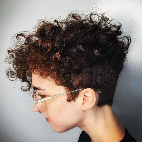 Best Short Curly Hairstyles You'll Fall In Love With In Funky Pixie Undercut Hairstyles (View 7 of 25)