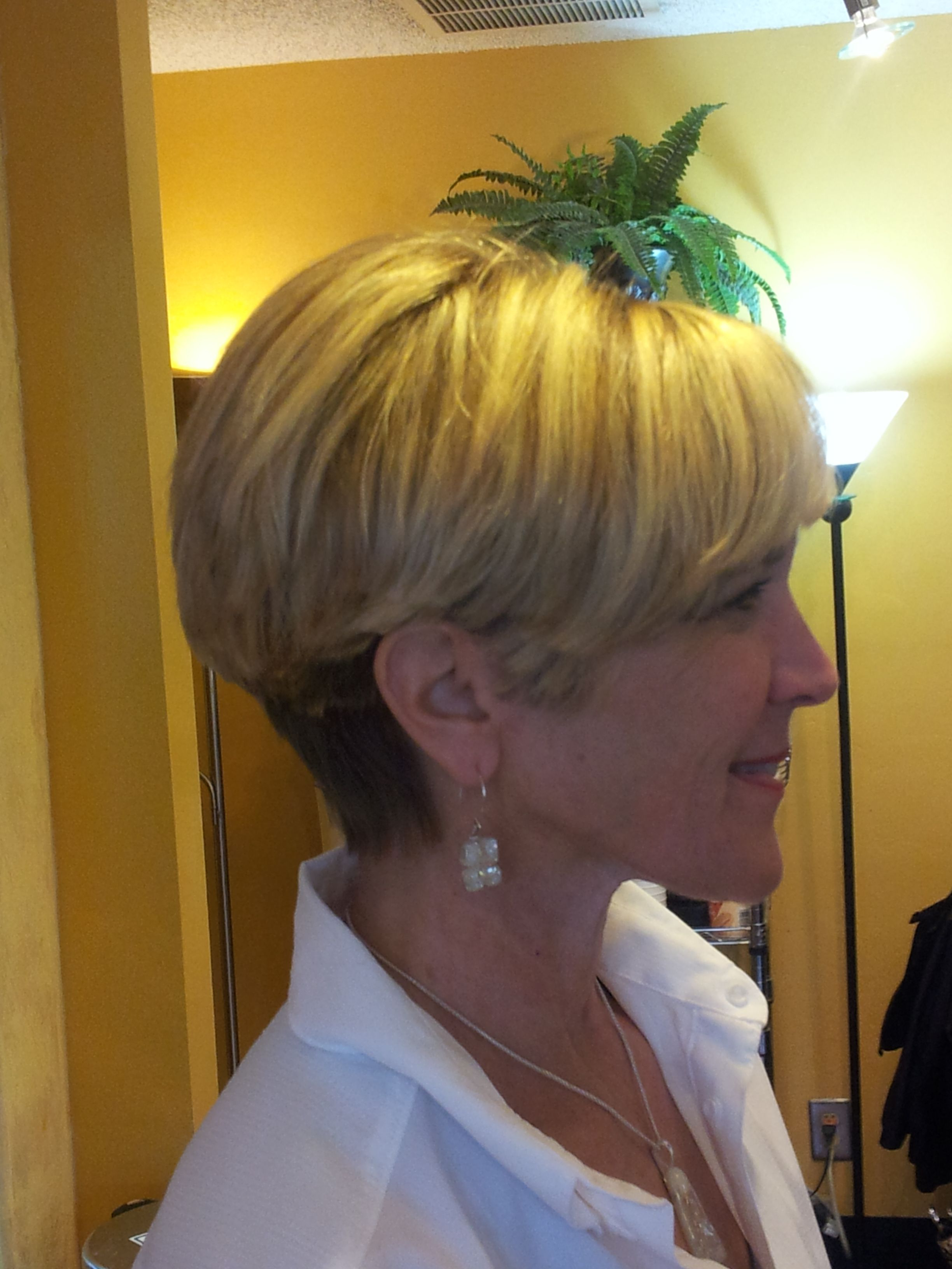 Bonnie Wedge Haircut With Multicolor Weave | Pazazz Salon Hairstyles Throughout Wedge Short Haircuts (View 8 of 25)
