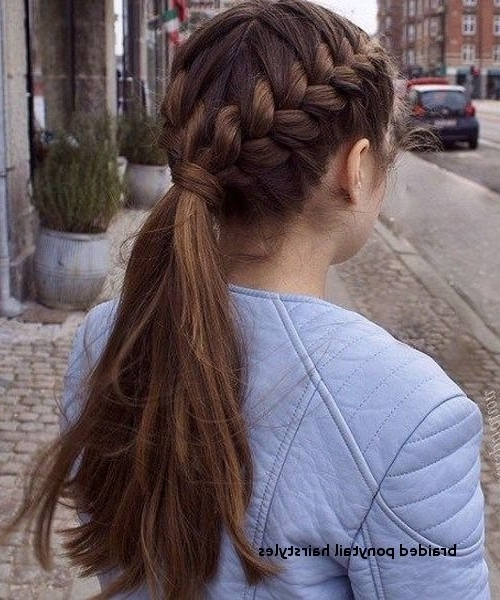 Braided Ponytail Hairstyles Beautiful Double Braided Hairstyles 2018 Pertaining To Beautifully Braided Ponytail Hairstyles (View 23 of 25)