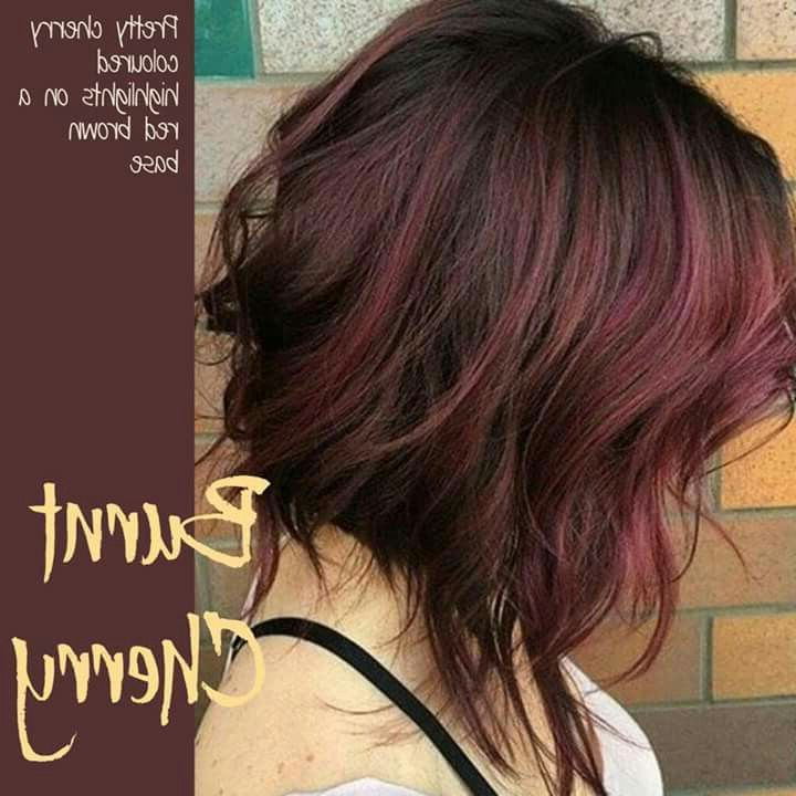 Brunette With Red Highlights | Hair Color | Pinterest | Hair, Hair Pertaining To Stacked Black Bobhairstyles  With Cherry Balayage (View 13 of 25)