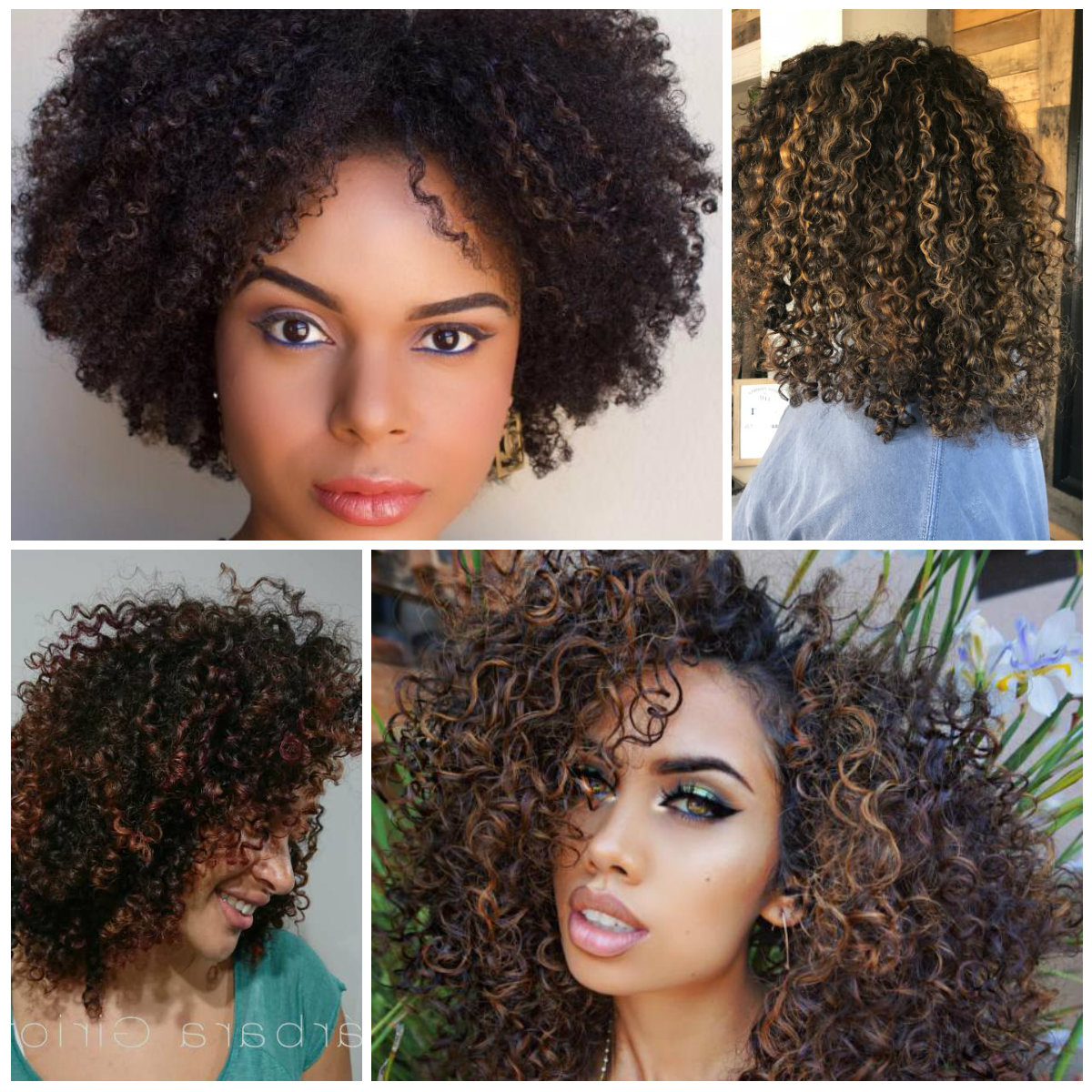 Caramel – Best Hair Color Ideas & Trends In 2017 / 2018 Pertaining To Brown Curly Hairstyles With Highlights (View 17 of 25)