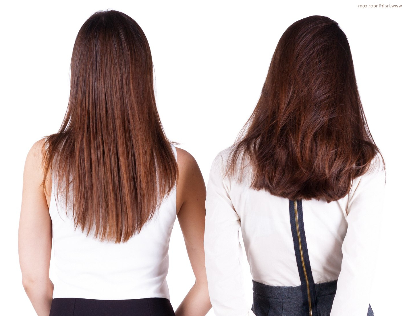 Cut The Back Of Long Hair In A U Shape, V Shape Or A Straight Line Pertaining To V Shaped Layered Short Haircuts (View 13 of 25)