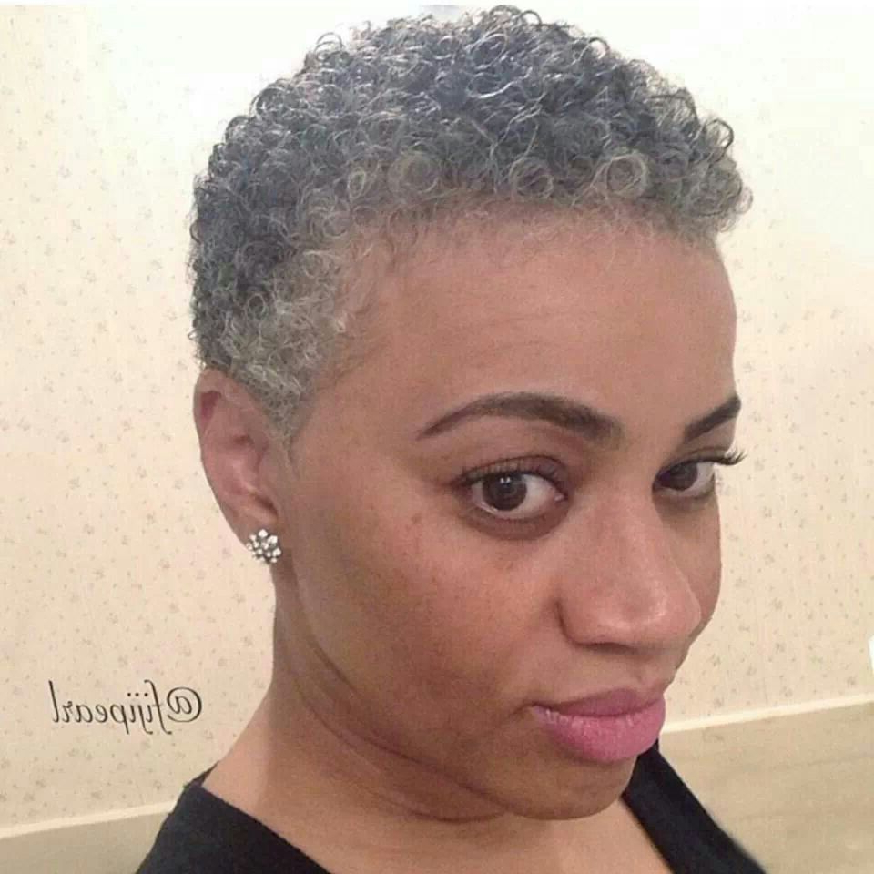 Cute Grey Twa; I Follow Her& Love Her!! | Gray Chic In 2018 With Short Hairstyles For Black Women With Gray Hair (View 5 of 25)