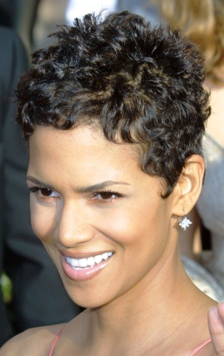 Cute Pixie Haircut For Curly Hair Tumblr : 2014 Women Haircuts Inside Short Curly Hairstyles Tumblr (View 6 of 25)