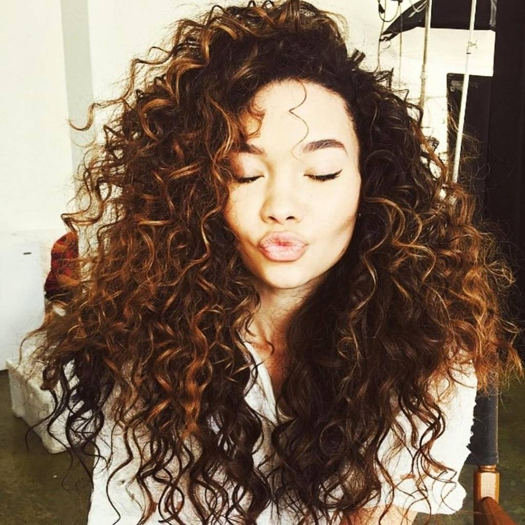 Dark Natural Curly Hair With Highlights – Hairstylist.ml Throughout Brown Curly Hairstyles With Highlights (Gallery 9 of 25)