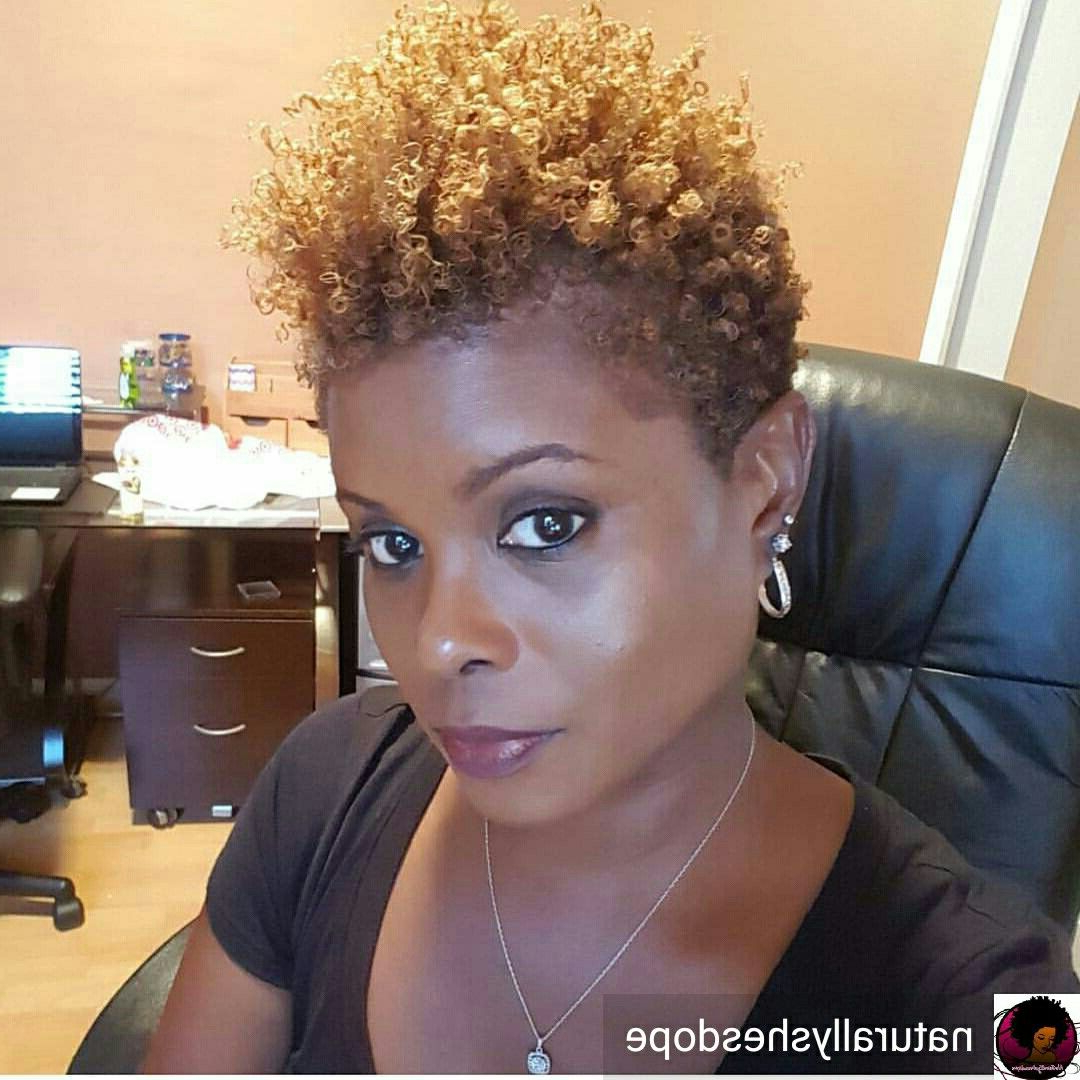 Dope Tapered Frostepthebarber S Blackhairinformation | Natural Pertaining To Soft Curly Tapered Pixie Hairstyles (Gallery 1 of 25)