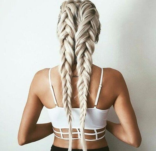 Double Blonde Dutch Braids Pictures, Photos, And Images For Facebook In Blonde Ponytails With Double Braid (View 22 of 25)