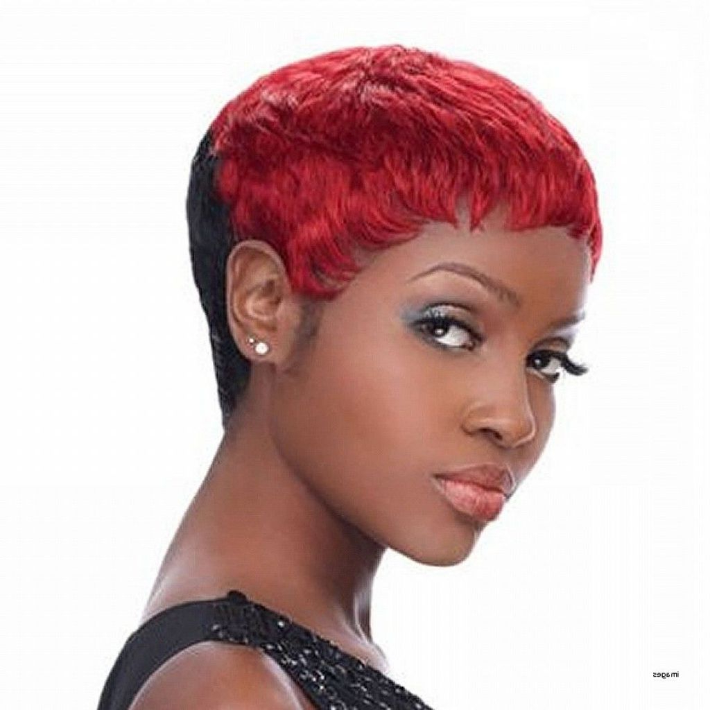 ? 24+ Awesome Black Curly Short Hairstyles: Appealing Natural Curly Within Naturally Curly Short Haircuts (View 23 of 25)