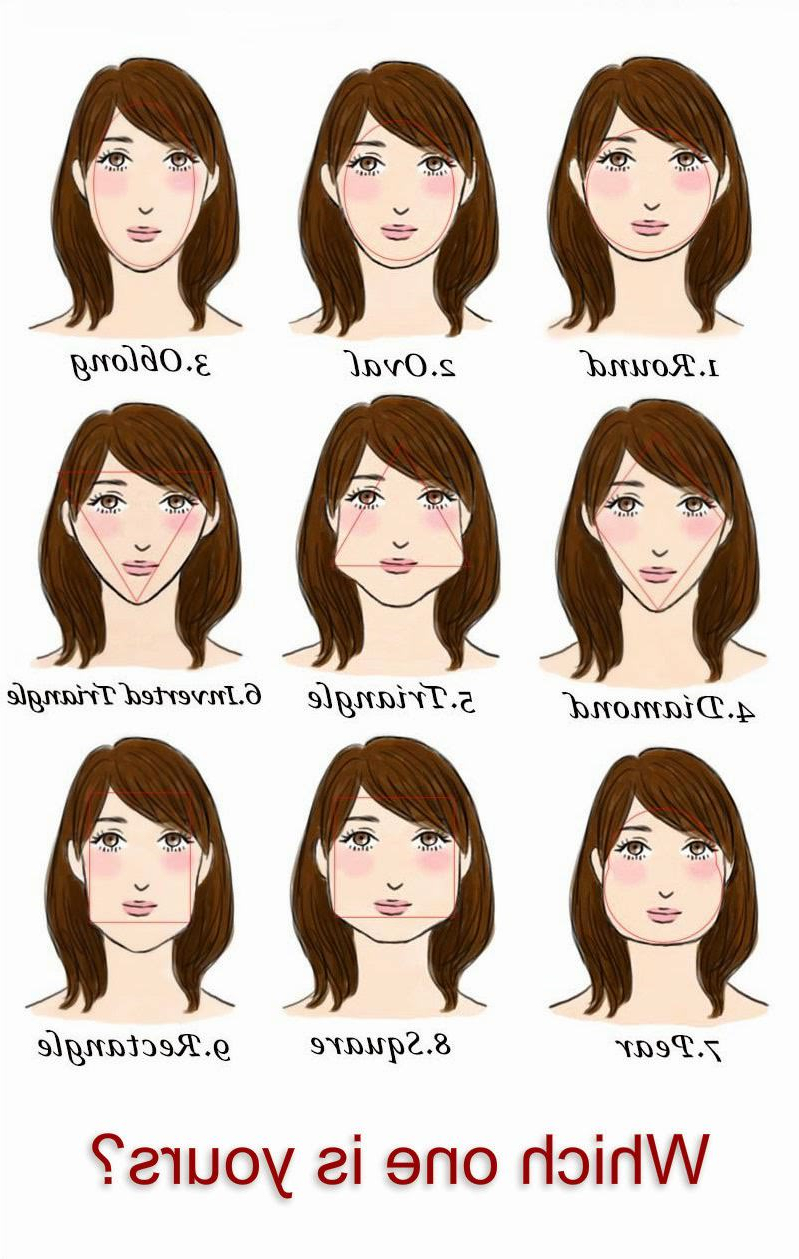 Facts About Hairstyles And Face Shapes • Hype My Hair Throughout Short Hairstyles For Pear Shaped Faces (View 20 of 25)