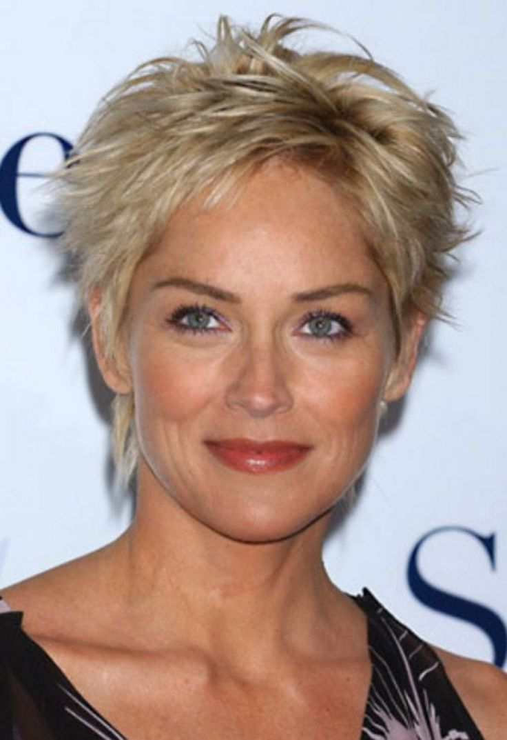 Five Things You Need To Know About Sharon Stone Short Hairstyles In Sharon Stone Short Haircuts (View 14 of 25)
