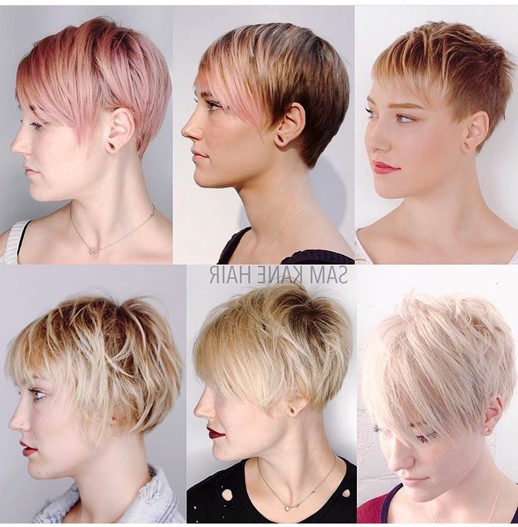 Growing Out A Short Pixie Cut @samkanehair … | Pixie Hairstyles With Regard To Stylish Grown Out Pixie Hairstyles (View 21 of 25)