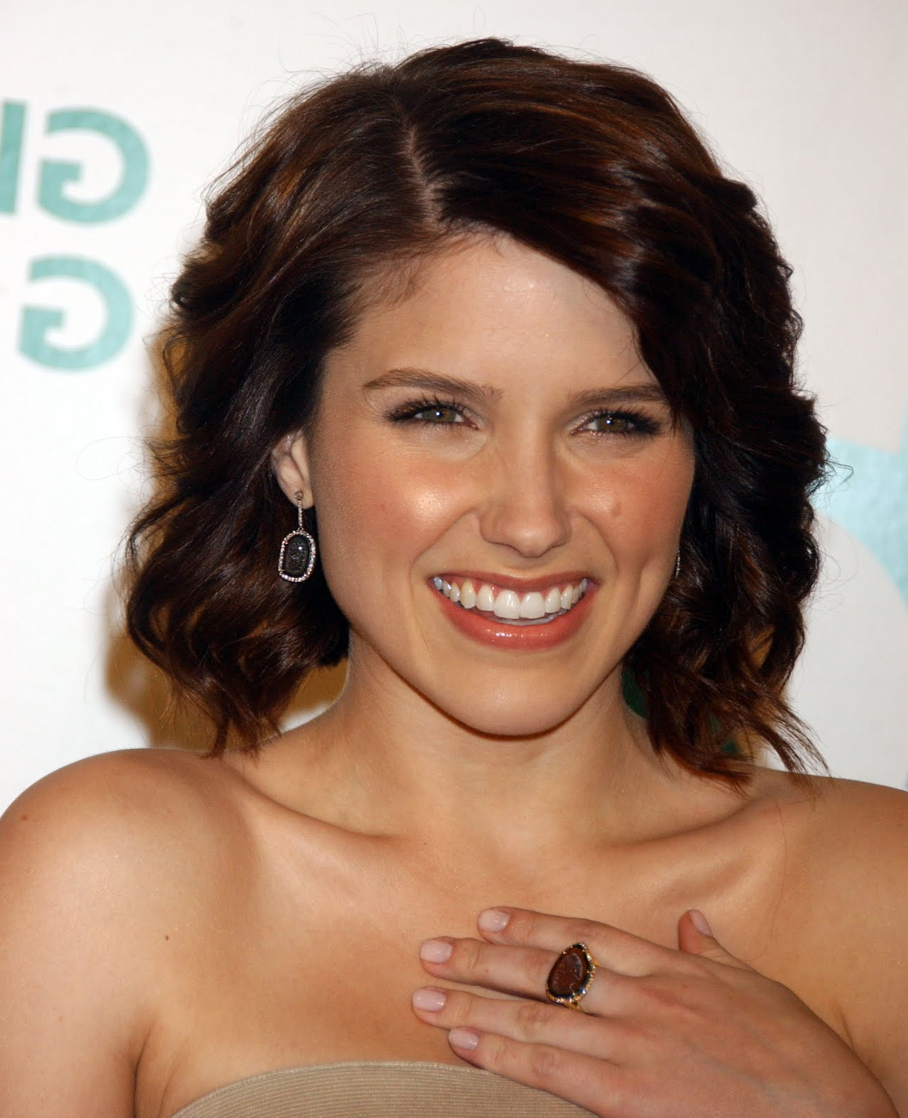 Hairstyles, Braids And Hair Style Ideas: Sophia Bush Hairstyles 2009 Within Sophia Bush Short Hairstyles (View 3 of 25)