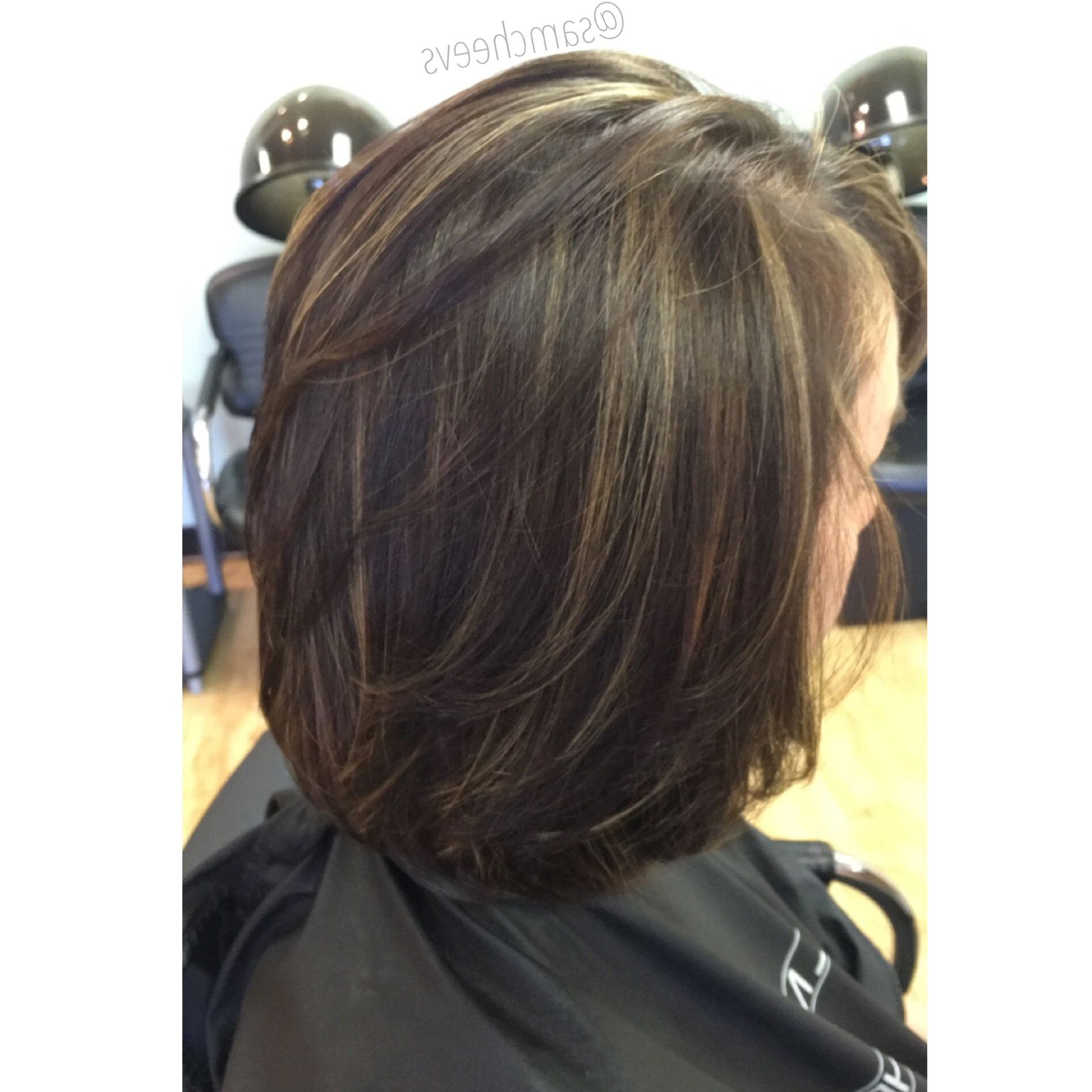 Highlights For Short Hair (View 13 of 25)