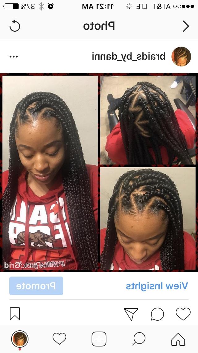Individuals Box Braids Black Hair Hairstyles Cornrows Bun Life Inside Braid And Bun Ponytail Hairstyles (View 20 of 25)