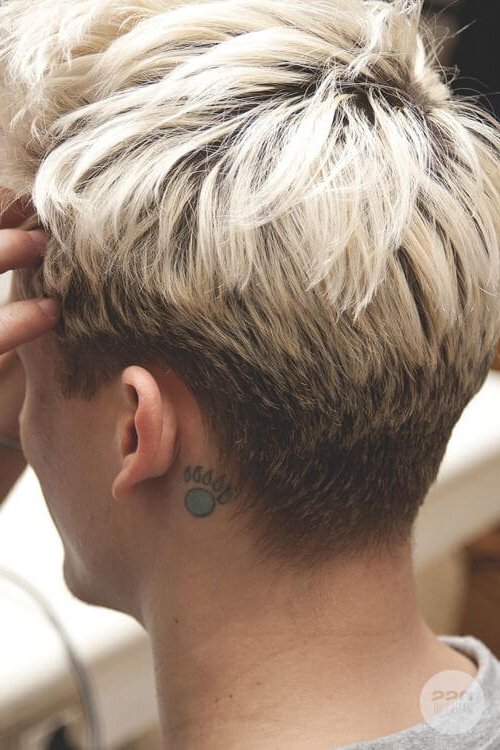 Introducing The Modern Bowl Cut Hairstyle With Tapered Bowl Cut Hairstyles (View 20 of 25)