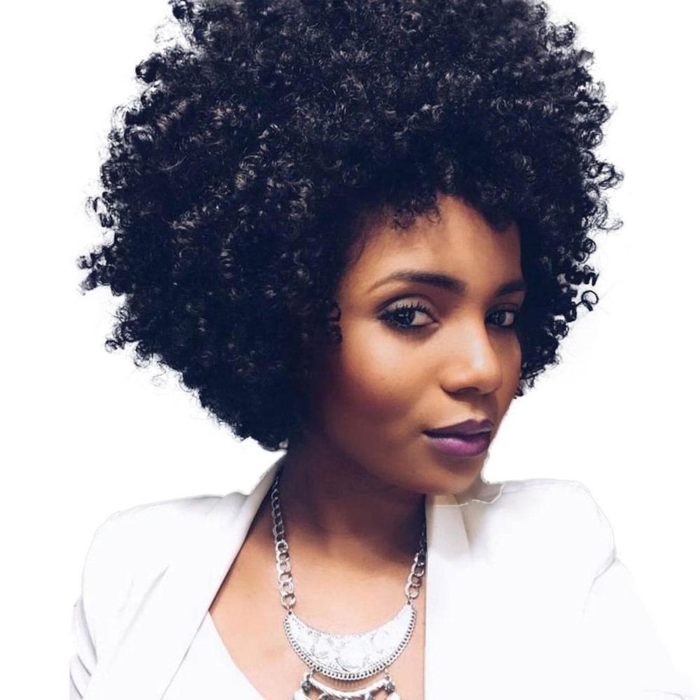 Natural Black Afro Wig Kinky Curly Short Hair Wigs For Black Women For Black Women Natural Short Haircuts (View 22 of 25)