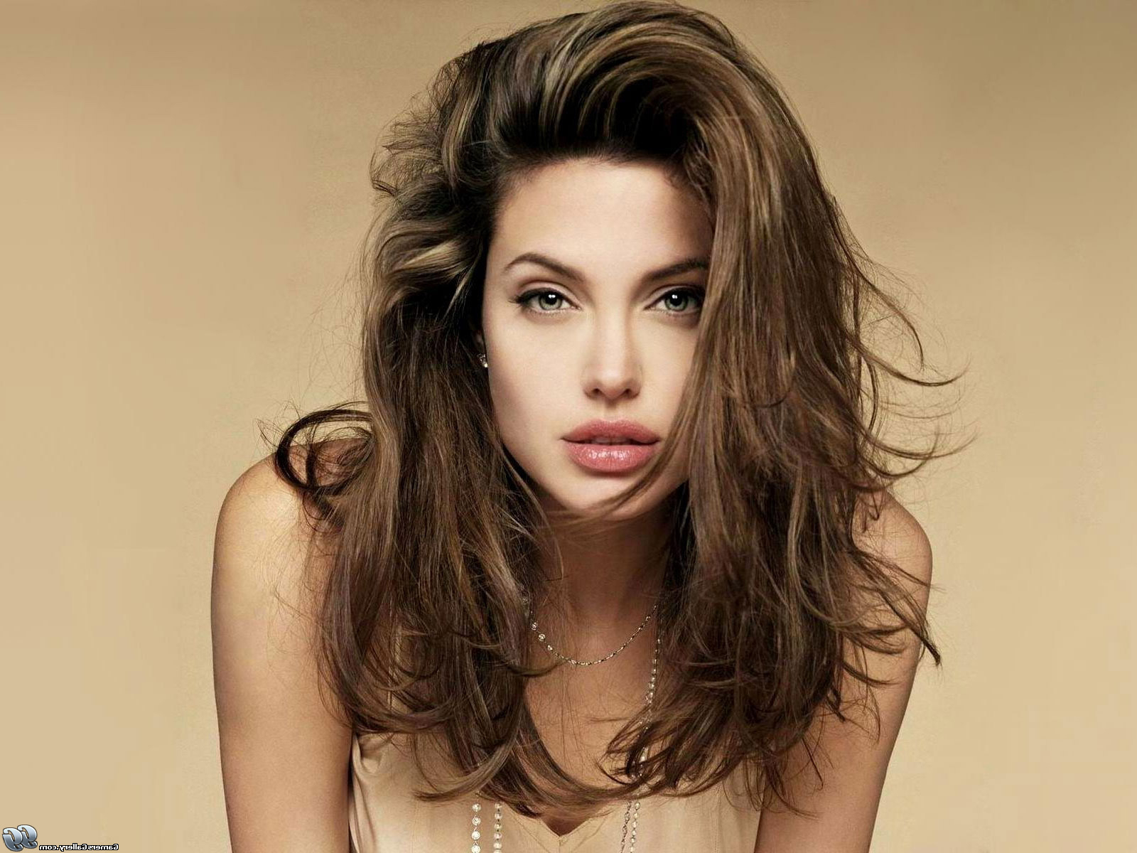 Pictures Of Photos – Short Hairstyles Help Angelina Jolie ]:=  Intended For Angelina Jolie Short Hairstyles (View 18 of 25)