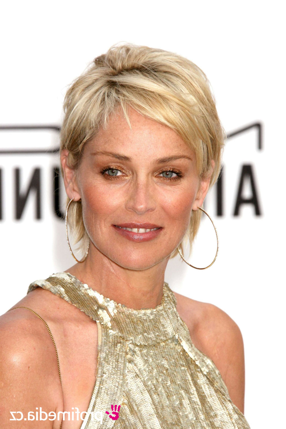 Sharon Stone – – Hairstyle – Easyhairstyler In Sharon Stone Short Haircuts (View 4 of 25)