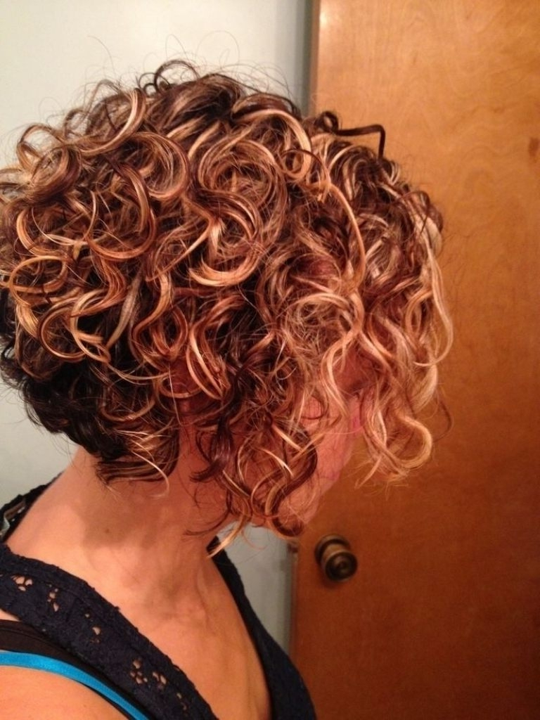 Short Curly Hairstyles Stacked Best 25 Curly Bob Hairstyles Ideas Pertaining To Stacked Curly Bob Hairstyles (View 3 of 25)