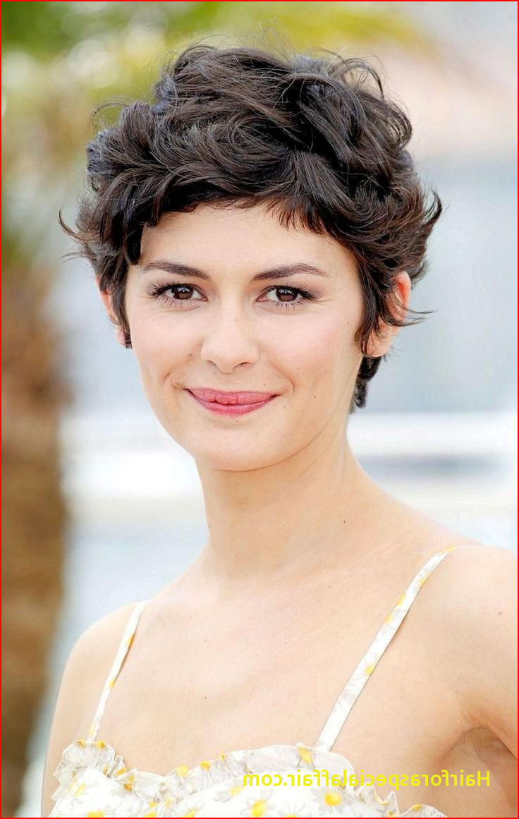 Short Haircuts For Wavy Frizzy Hair Short Curly Hairstyles 2017 For Intended For Short Haircuts For Thick Frizzy Hair (View 22 of 25)