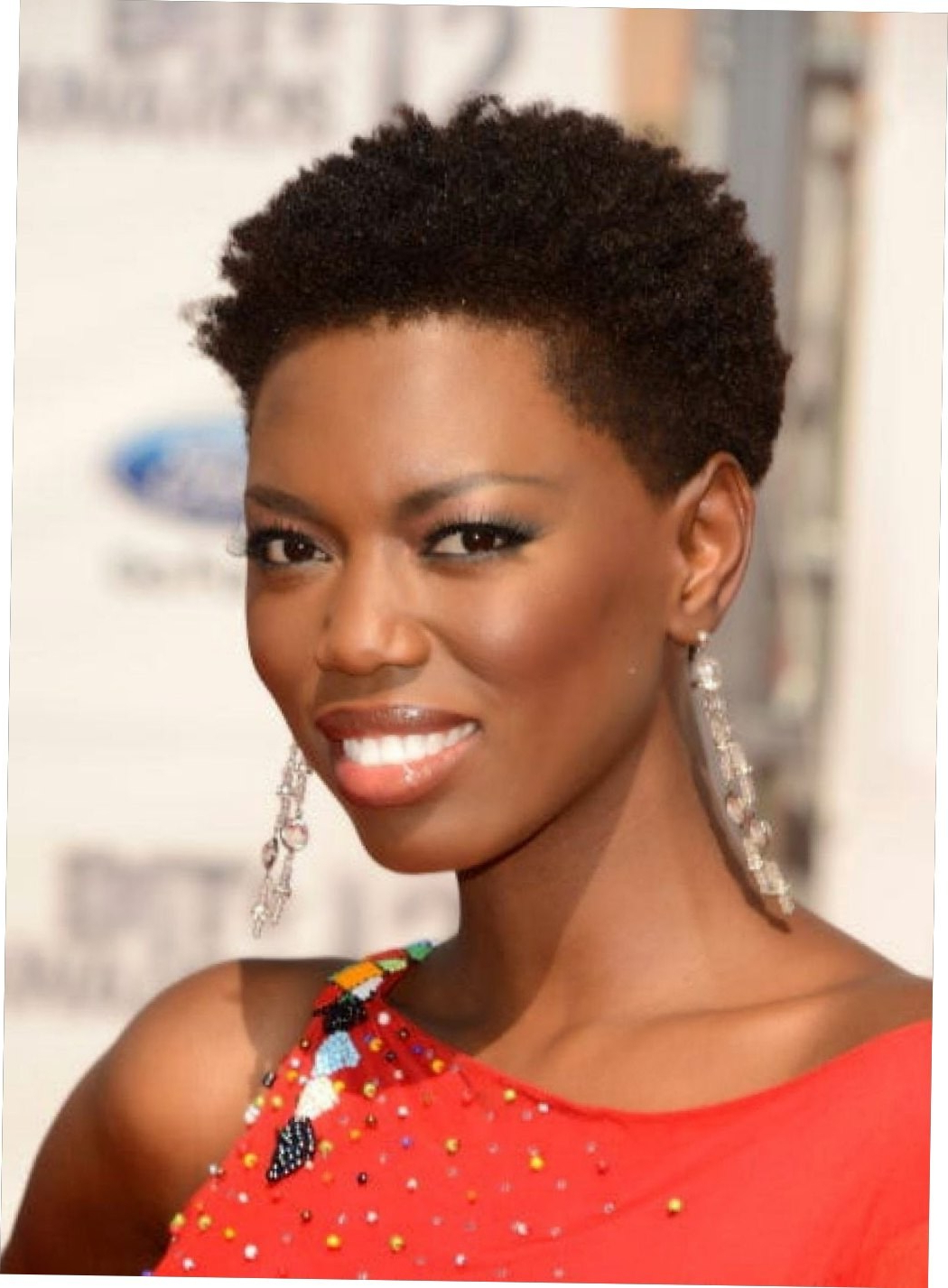 Short Hairstyle For Black Womens | Short Black Hairstyle African Inside Black Women Natural Short Hairstyles (View 18 of 25)
