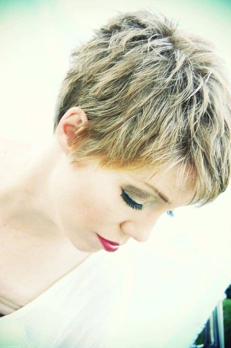 Short Hairstyles For Thick Hair 2015 Elegant 20 Layered Short Pertaining To Short Hairstyles For Thick Hair (View 22 of 25)