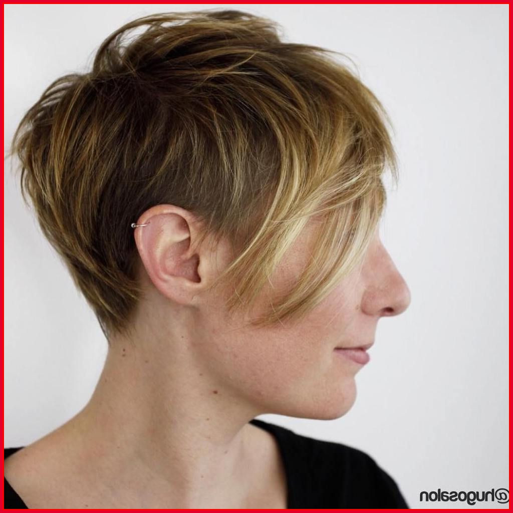 Short Shaggy Hairstyles For Fine Hair 151640 Short Shag Hairstyles With Short To Medium Shaggy Hairstyles (View 25 of 25)