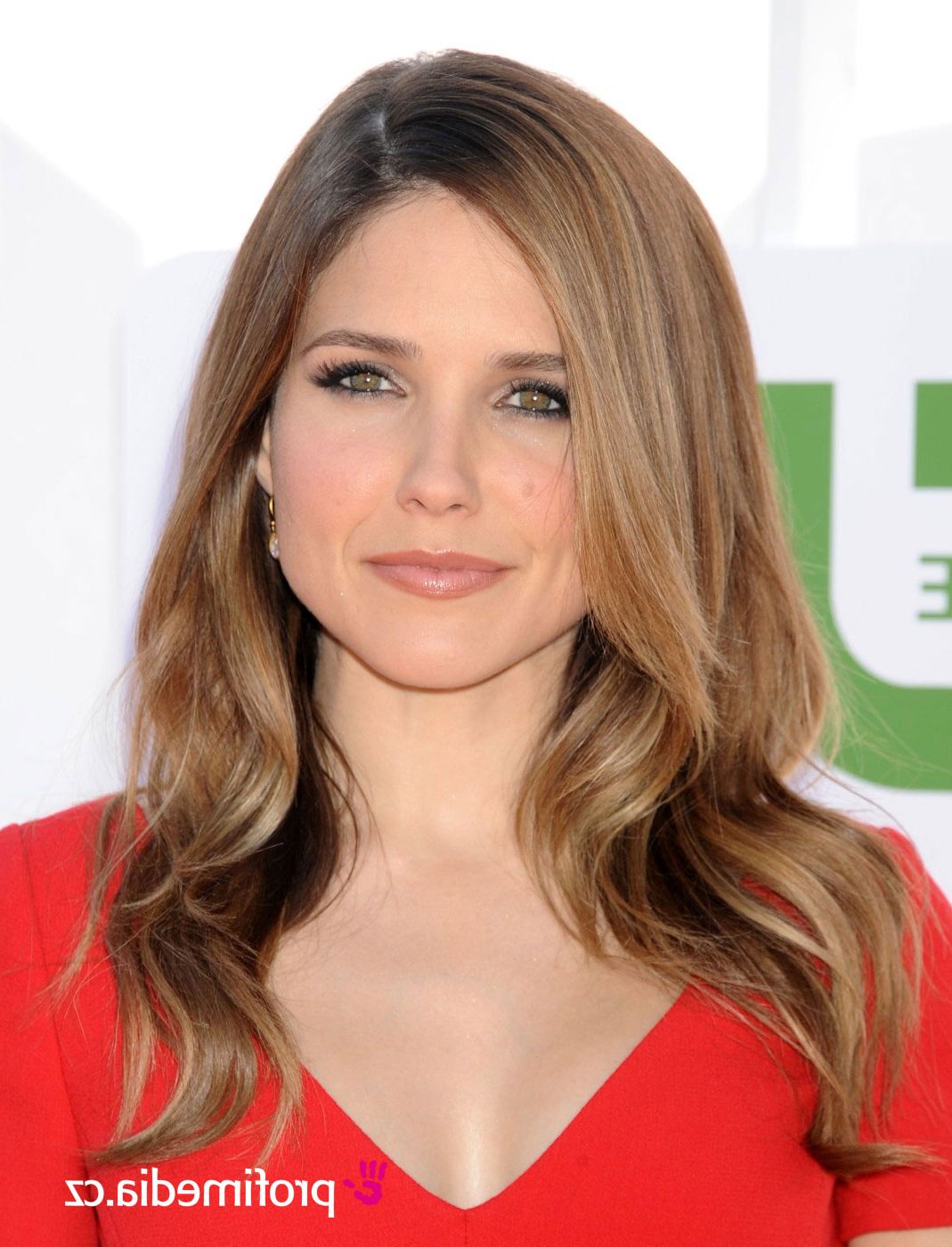 Sophia Bush – – Hairstyle – Easyhairstyler Within Sophia Bush Short Hairstyles (View 6 of 25)