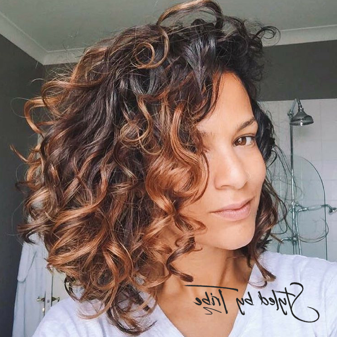 Style Inspiration In 2018 | Hair | Pinterest | Curly Hair Styles Within Brown Curly Hairstyles With Highlights (View 2 of 25)