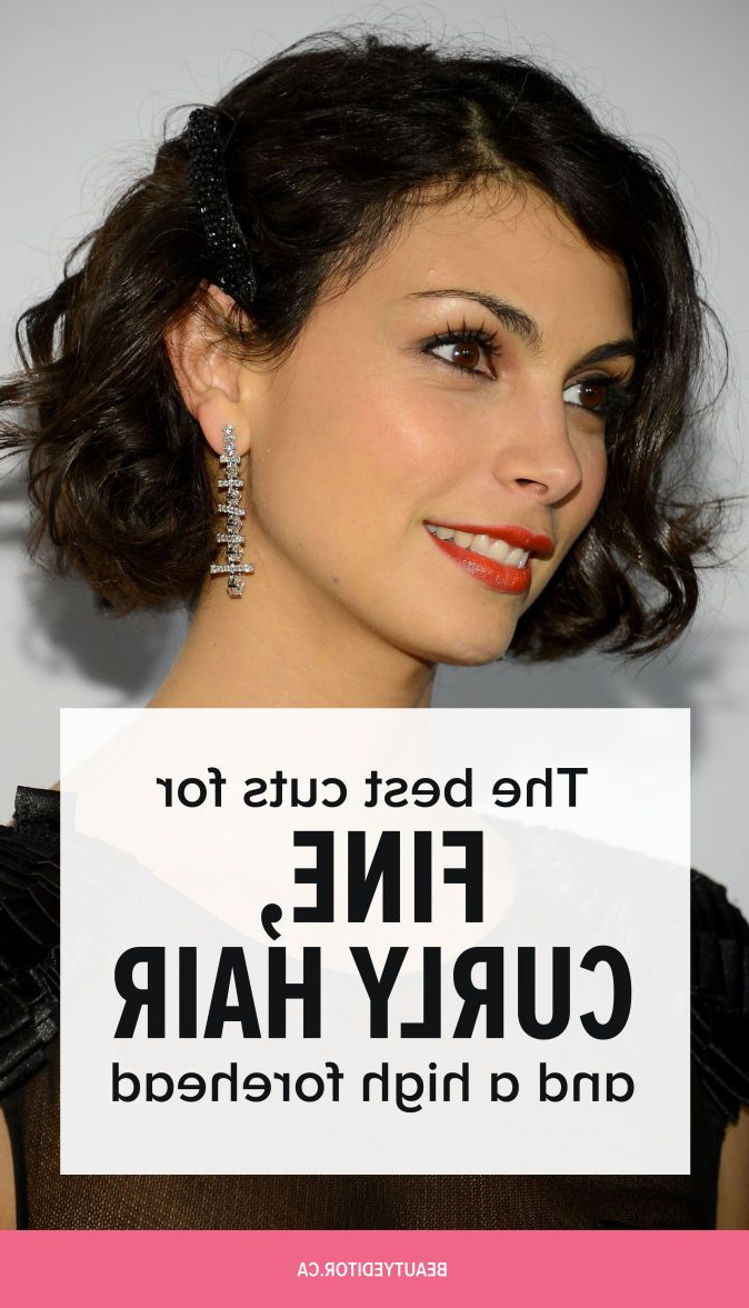 The Best Cuts For Fine, Curly Hair And A High Forehead For Short Fine Curly Hairstyles (View 9 of 25)