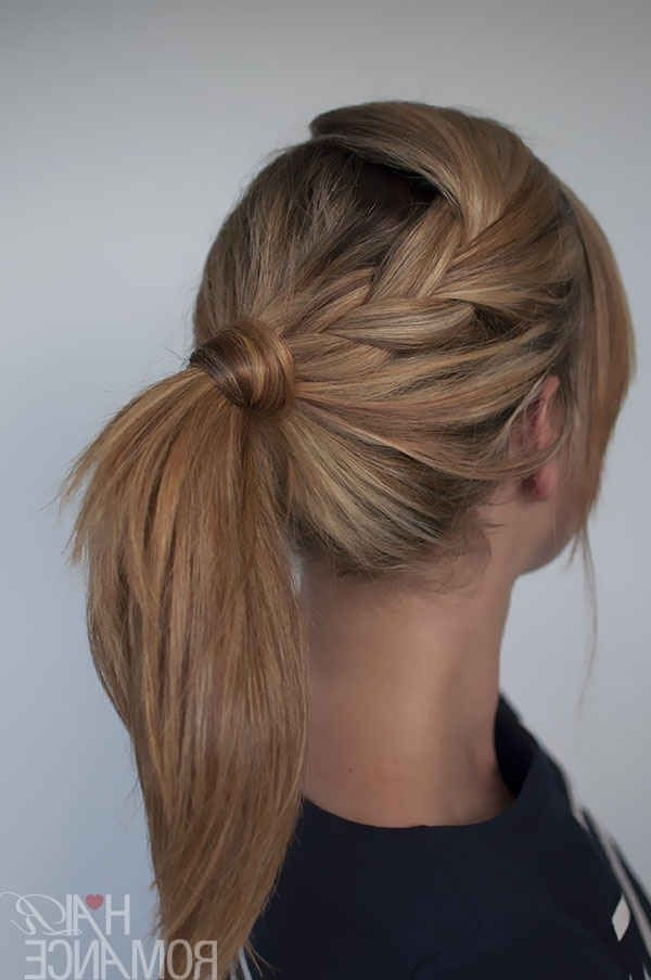 Featured Photo of Braided Maze Low Ponytail Hairstyles
